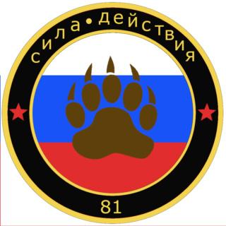 sila deystviya airsoft team 81