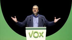 VOX | Valoración elecciones generales Images12
