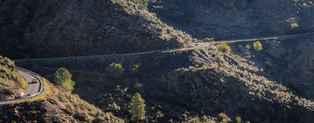 26 de Octubre ruta de la sierra pobre a la tejera negra por la muralla china.  - Página 3 Termin47