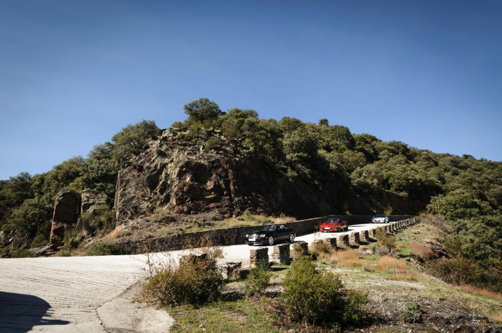 26 de Octubre ruta de la sierra pobre a la tejera negra por la muralla china.  - Página 3 Termin60