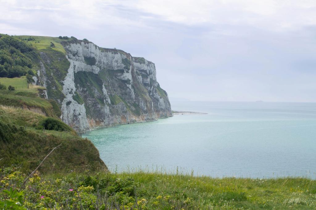 Les falaises 06072013