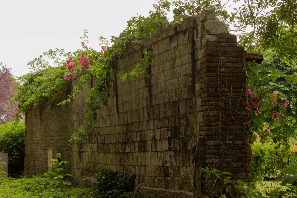 Vieux murs 06072015