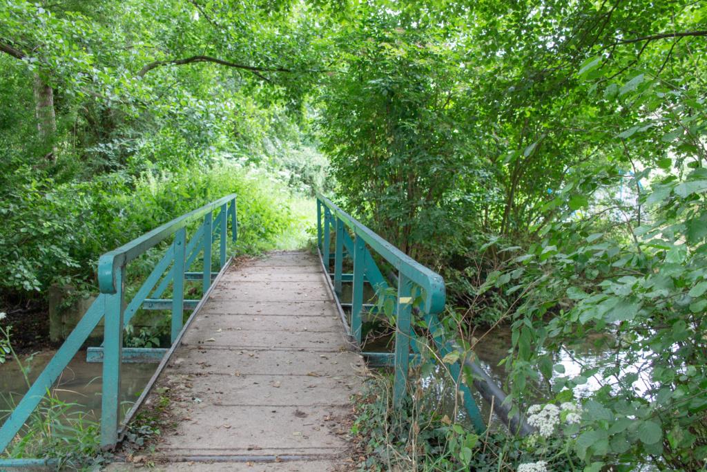 Passerelle dans les bois Img_3011