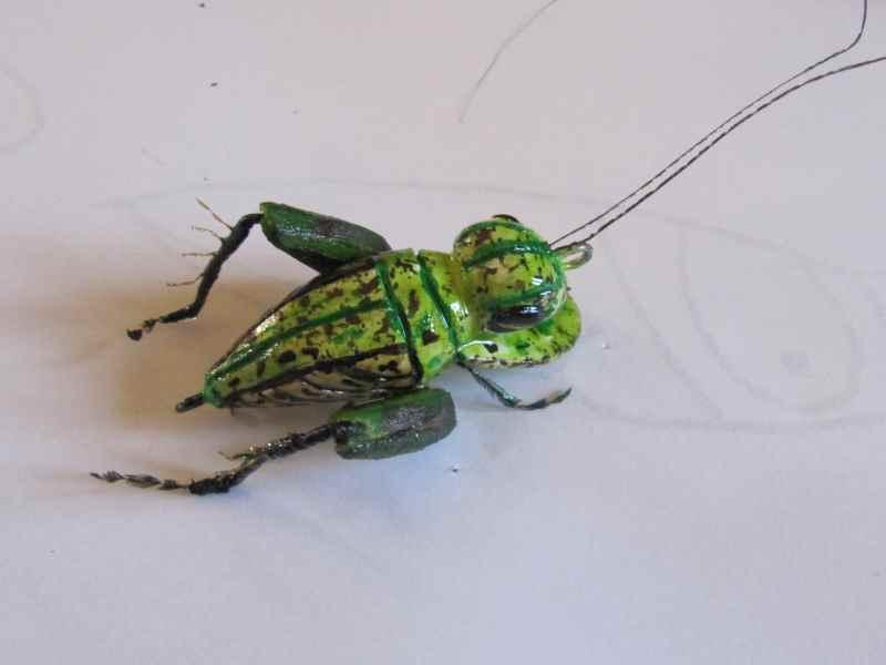 Réalisation d'insectes Img_0038