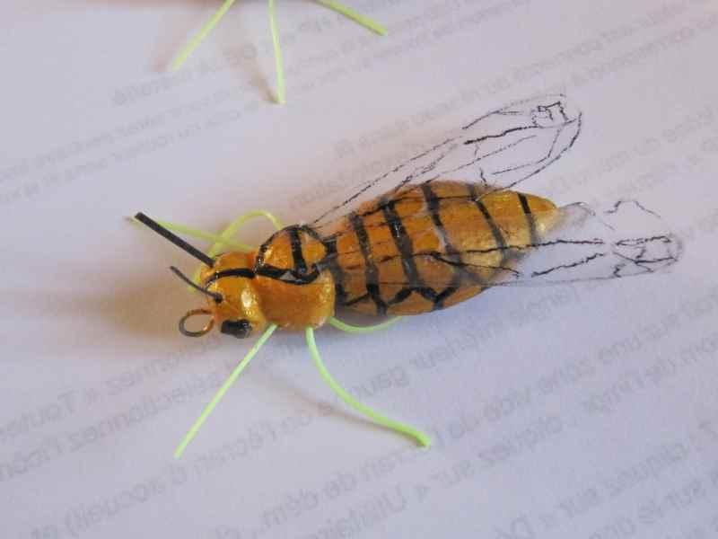 Réalisation d'insectes Img_0039