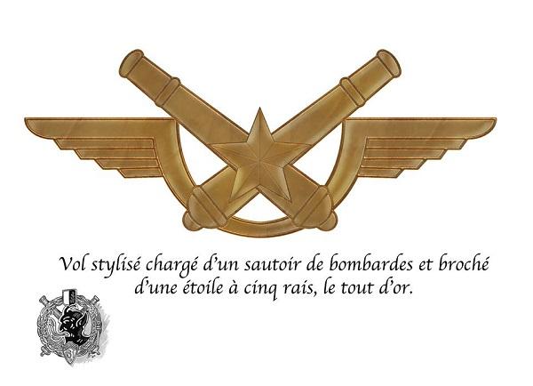 Nouvel insigne de béret Ins_6110