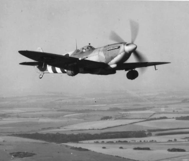 Photo : bière et Spitfire Spitfi10