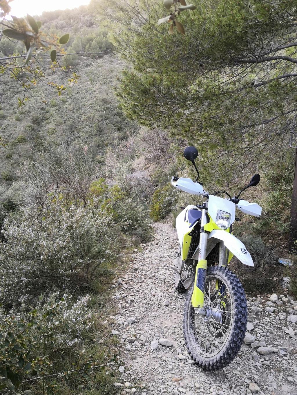 MotoZ Tractionator Desert H/T 16747410
