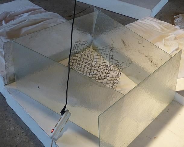 grilles-et-cie....transvasé P1310010