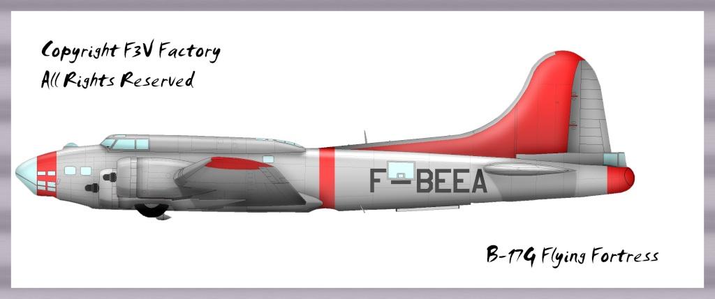 Tiens je viens de retrouver cela: épave de P-51 B-17f-10