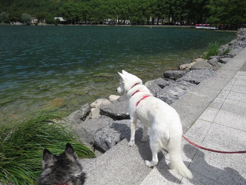 Chadka et Yocco au bord des lacs 016_ch10