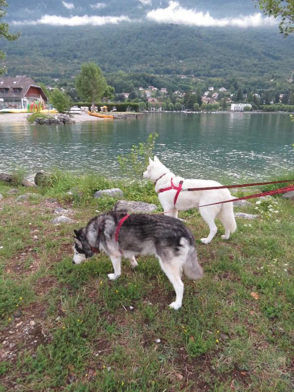 Chadka et Yocco au bord des lacs 027_ch10