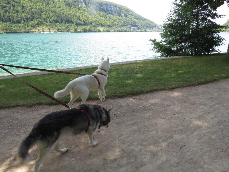 Chadka et Yocco au bord des lacs 02_yoc10