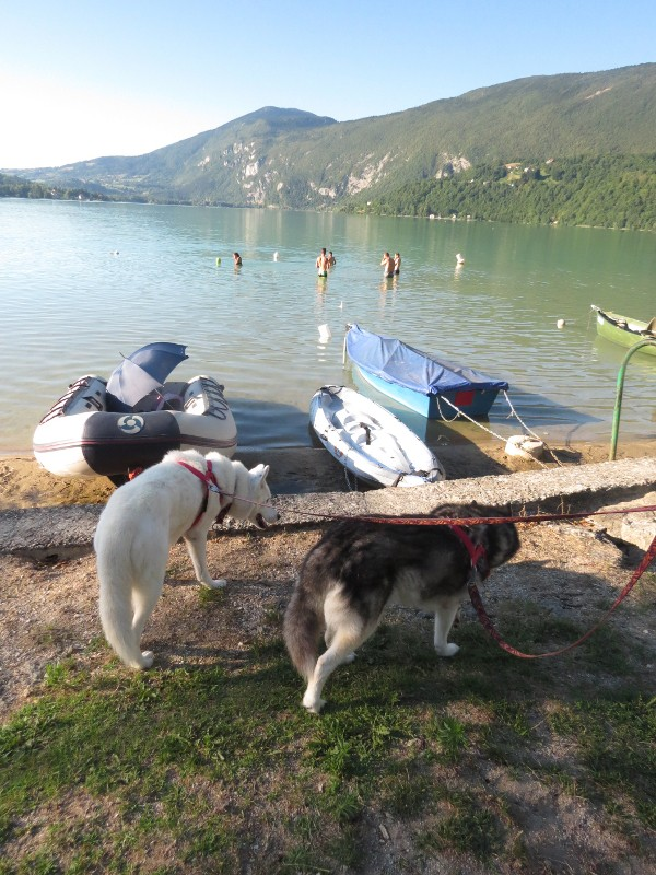 Chadka et Yocco au bord des lacs 40_yoc10
