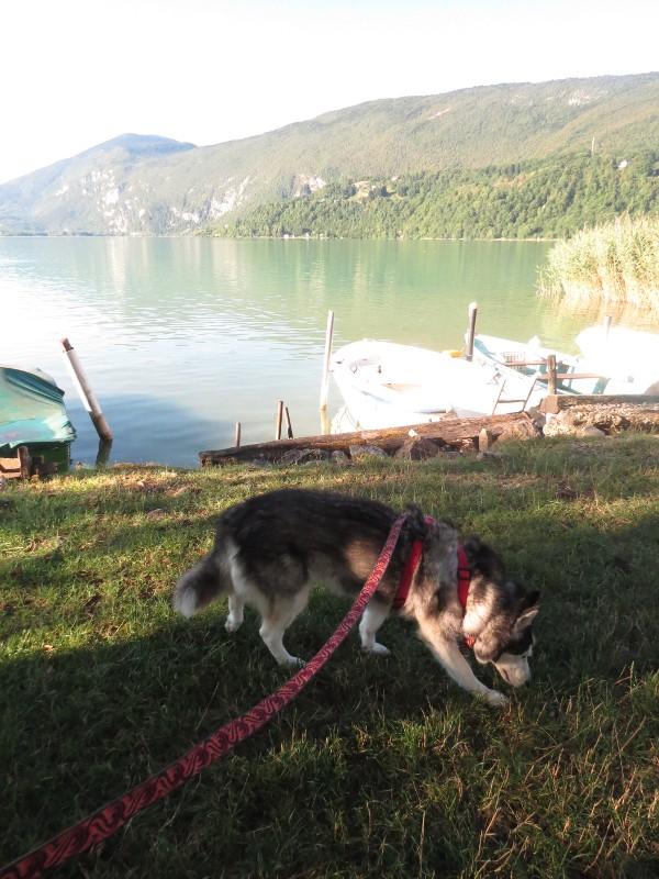 Chadka et Yocco au bord des lacs 42_cha10