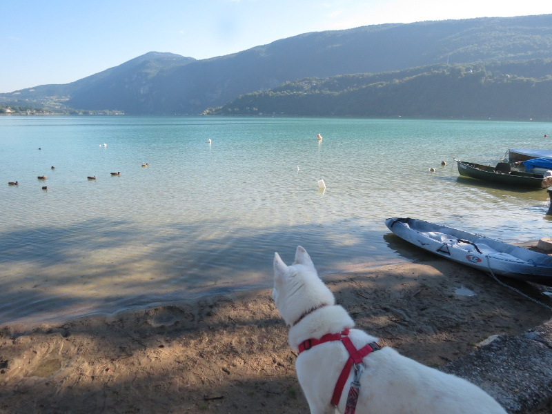 Chadka et Yocco au bord des lacs 46_yoc10