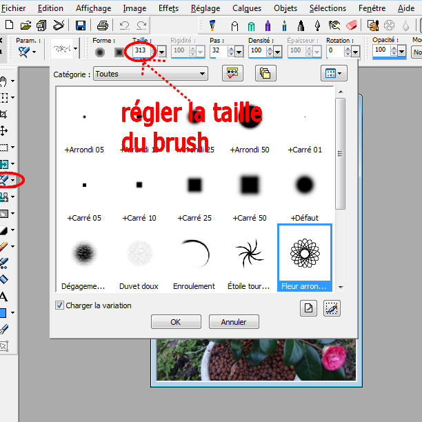 tuto 6 _ pinceaux ou brushes Image210