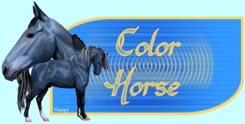 Color's Horses