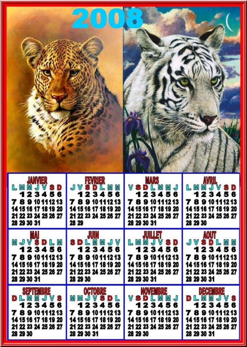 Année 2008 au complet - Page 2 Ceyikz10