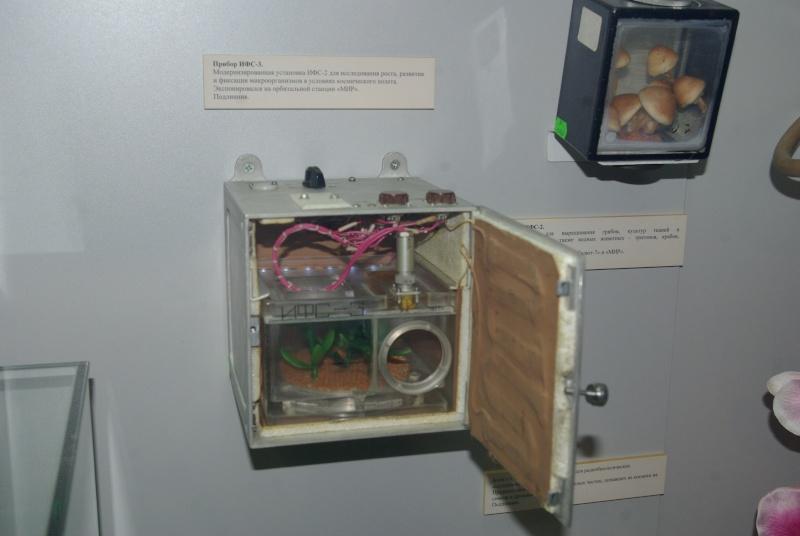 [ISS] Les astronautes vont manger leur 1ère salade cultivée dans l'espace Imgp0410