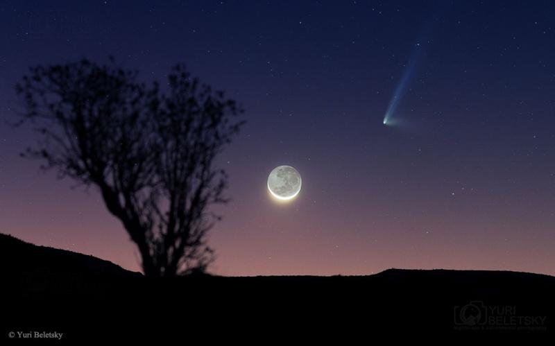 C/2014 Q1 (PanSTARRS) Comet210