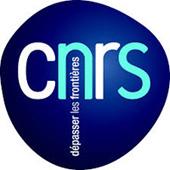 logo_c11.jpg