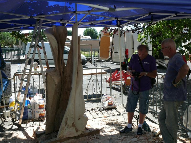 Symposium de Sculpture - Marsac sur Tarn P1180612