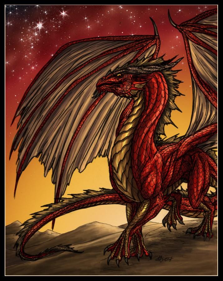 Dragons de Feu Dragon12
