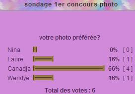 sondage 1er concours photo Gana_c10