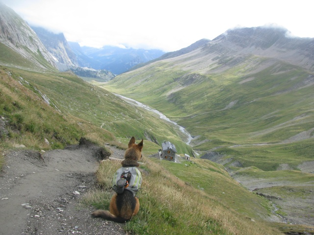 Trek - itinérance avec un chien Img_4821
