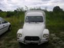 ma nouvelle cadiane P6220010