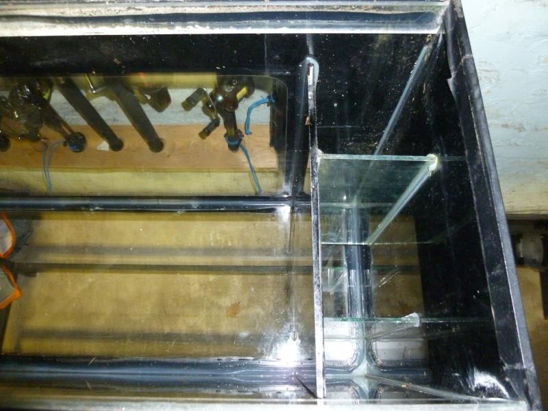 Quel type de filtrage placer pour mon aquarium ? P1040910