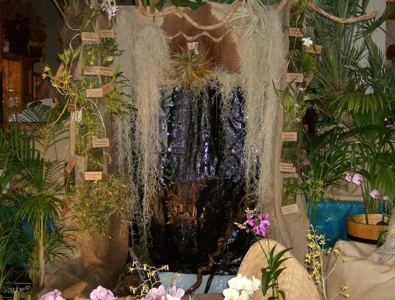 2ème salon international d'orchidées à Oudenaarde Hpim0211