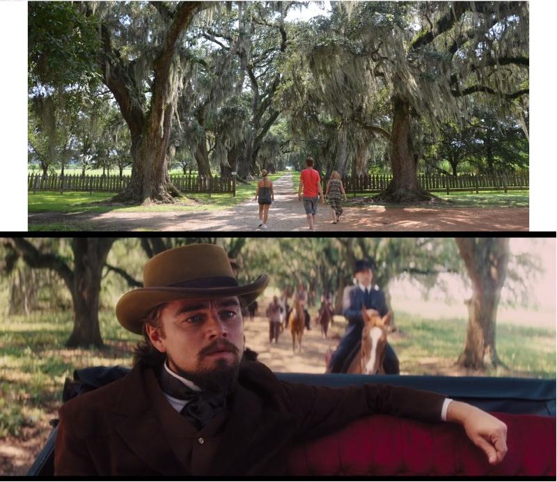 """7 États du Sud des USA - 5000 Km - 25 jours : """"De Miami à New Orleans via Atlanta"""" - Page 13 Chemin11"""