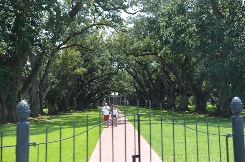 """7 États du Sud des USA - 5000 Km - 25 jours : """"De Miami à New Orleans via Atlanta"""" - Page 13 Dsc_0011"""