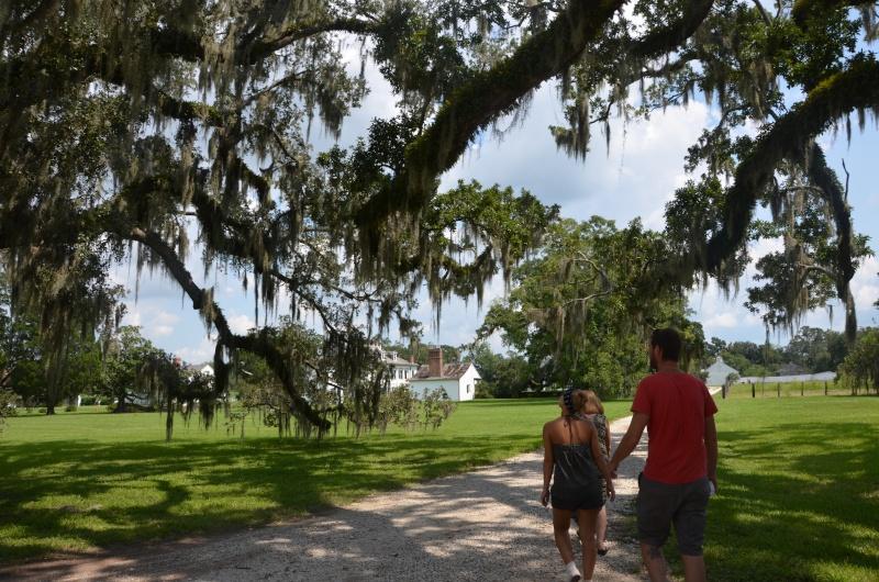 """7 États du Sud des USA - 5000 Km - 25 jours : """"De Miami à New Orleans via Atlanta"""" - Page 13 Dsc_0013"""