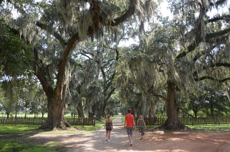 """7 États du Sud des USA - 5000 Km - 25 jours : """"De Miami à New Orleans via Atlanta"""" - Page 13 Dsc_0024"""