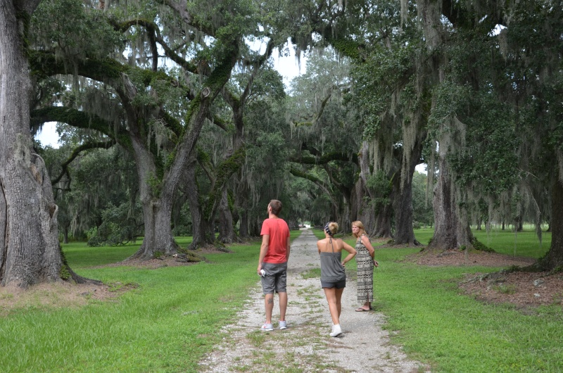 """7 États du Sud des USA - 5000 Km - 25 jours : """"De Miami à New Orleans via Atlanta"""" - Page 13 Dsc_0025"""