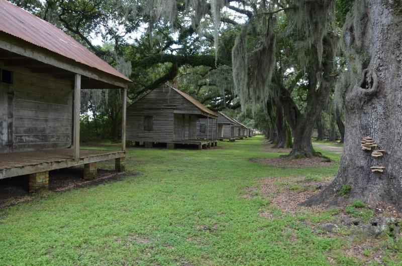 """7 États du Sud des USA - 5000 Km - 25 jours : """"De Miami à New Orleans via Atlanta"""" - Page 13 Dsc_0027"""