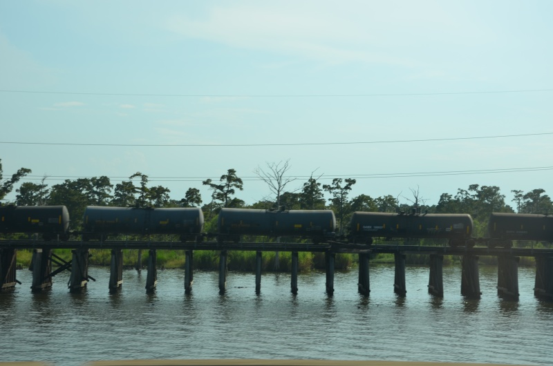 """7 États du Sud des USA - 5000 Km - 25 jours : """"De Miami à New Orleans via Atlanta"""" - Page 13 Dsc_0035"""