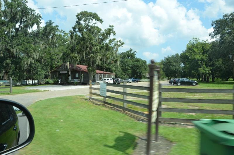 """7 États du Sud des USA - 5000 Km - 25 jours : """"De Miami à New Orleans via Atlanta"""" - Page 13 Dsc_1010"""