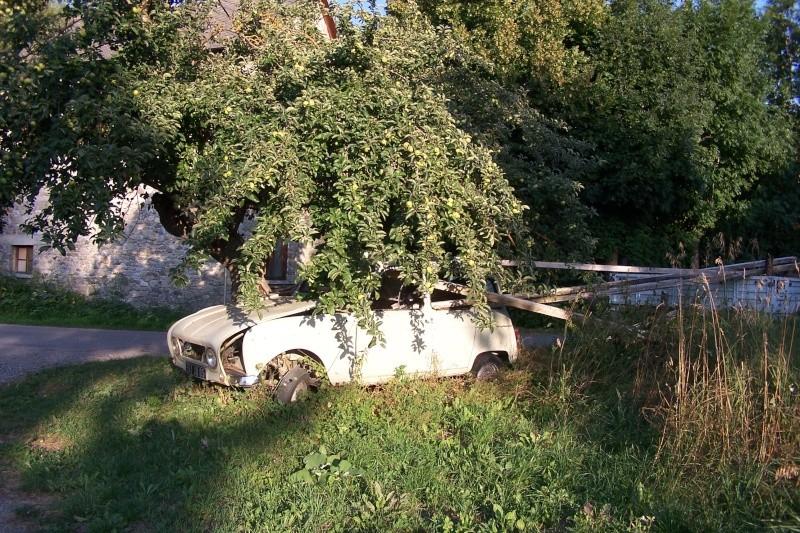 Les voitures abandonnées/oubliées (trouvailles personnelles) - Page 5 01711