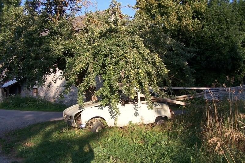 Les voitures abandonnées/oubliées (trouvailles personnelles) - Page 5 01910