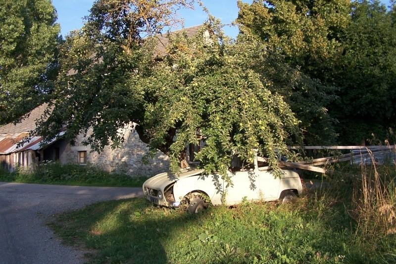 Les voitures abandonnées/oubliées (trouvailles personnelles) - Page 5 02410