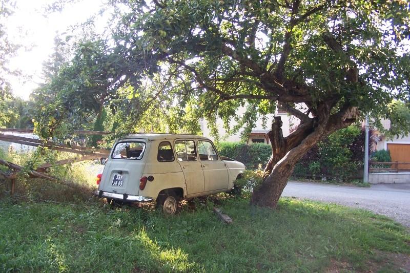 Les voitures abandonnées/oubliées (trouvailles personnelles) - Page 5 02511
