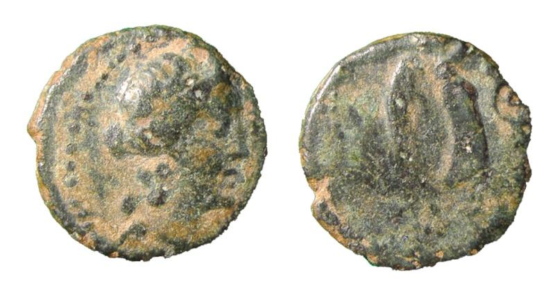 Bronce de Antipolis (Antibes, Galia) P7300011