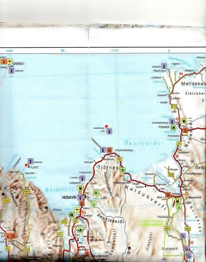 Fossiles islandais Tjorne10
