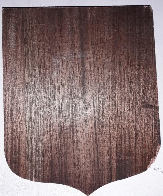 Insigne tissu 72e RIMA 20200686