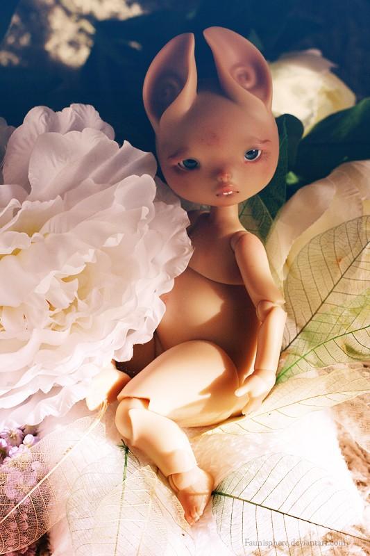 [Dust Of Doll Zouh Spun] ♥ Dardhee et Finelle ♥ 24/09 - Page 4 Dardhy10