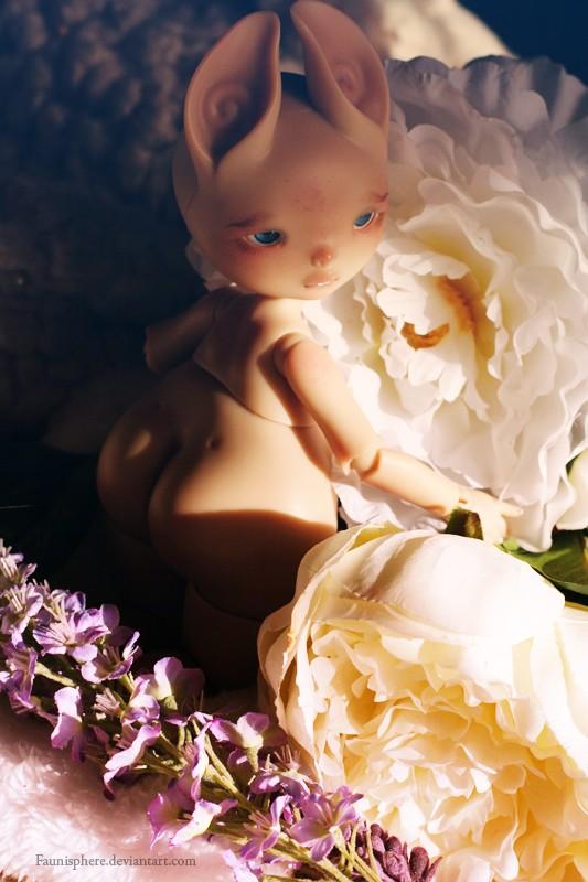 [Dust Of Doll Zouh Spun] ♥ Dardhee et Finelle ♥ 24/09 - Page 4 Dardhy11